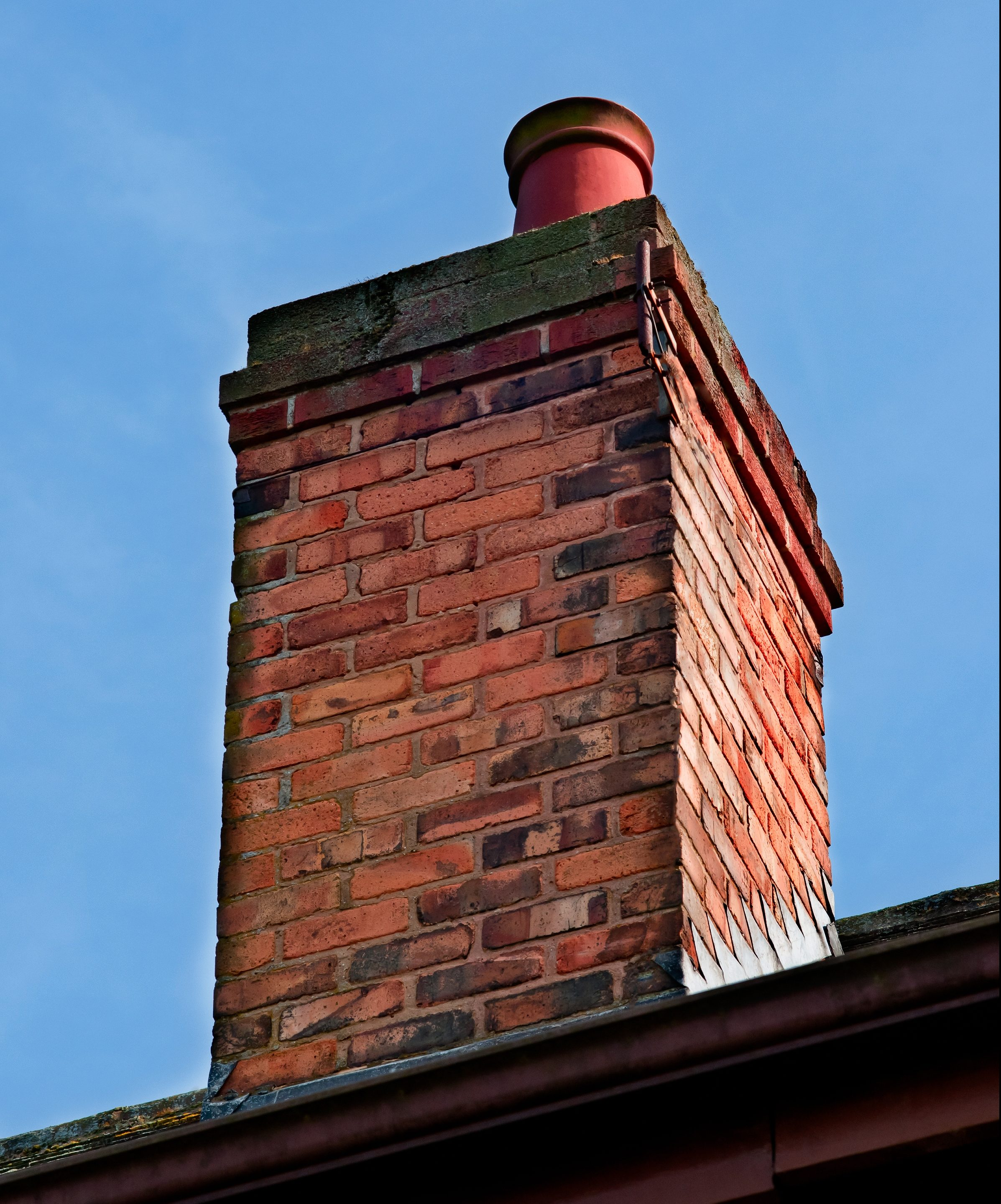 Get Rid Of Bats In The Chimney Bat Removal In Louisville